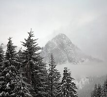 Foggy Mountains by Olga Zvereva