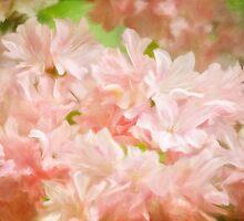 Cotton Candy Pink Azaleas by Lois  Bryan