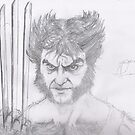 wolverine sketch by Andrew Pearce