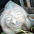 Last Garden gnome expression (6) by catherine walker