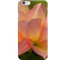 Apricot Dahlia iPhone Case/Skin