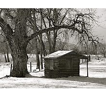 Log cabin Photographic Print
