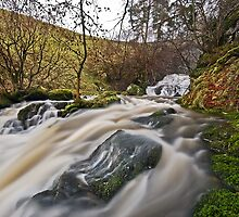 Catrigg Force (Lower Falls) near Stainforth, Yorkshire Dales by Steve  Liptrot
