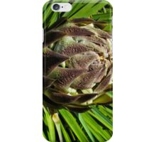 Joshua Tree budding flower head iPhone Case/Skin
