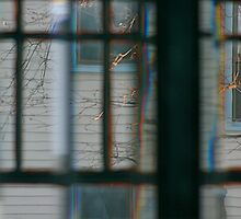 Through The Beveled Glass Window by Elizabeth Bravo