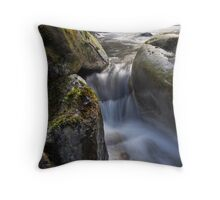 chute Throw Pillow