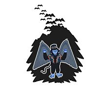 whatever happened to those cute flying monkeys? Photographic Print
