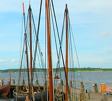 Viking Ships, Roskilde, Denmark by Virginia Maguire