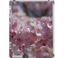 Early Spring Blossoms iPad Case/Skin