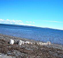 Rock Beach by terrebo
