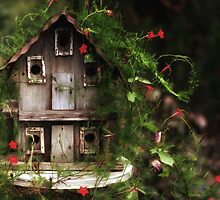 The Bird House by ladywings