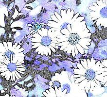 Daisy Blu by savapavo