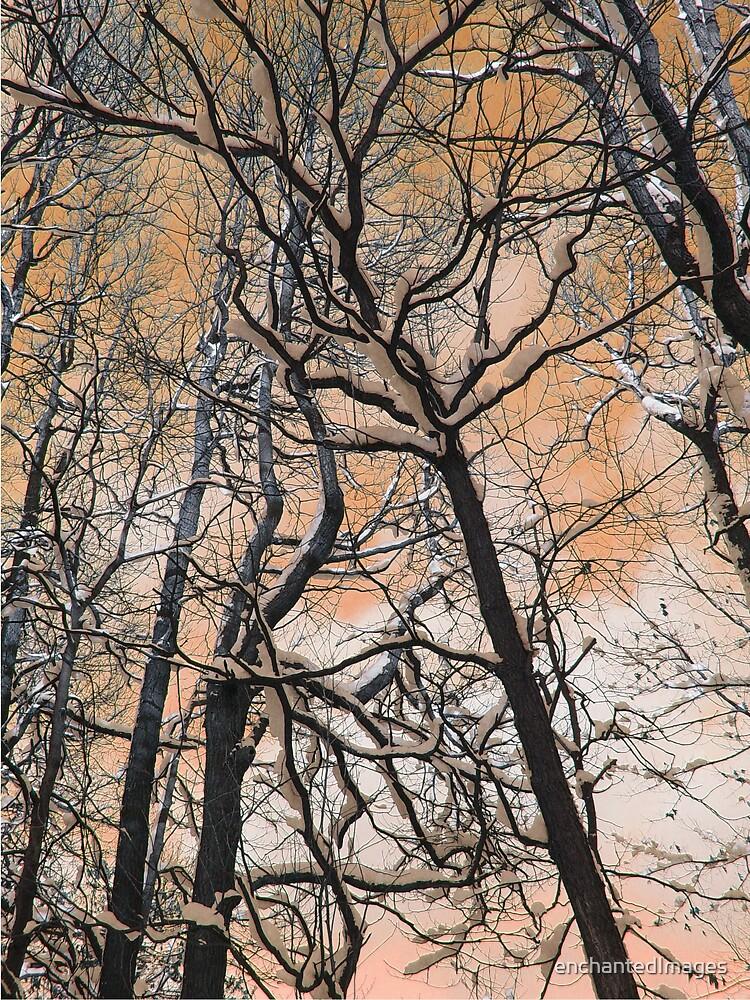 Marmalade Sky by enchantedImages