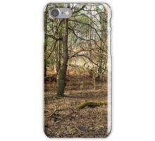 Winter Woodland iPhone Case/Skin
