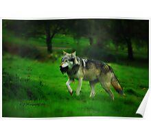 Wolf's Dinner~ Poster