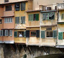 Windows & Shutters by Karen E Camilleri