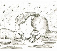 Random Acts of Platypus Kindess by mrsbeckerling