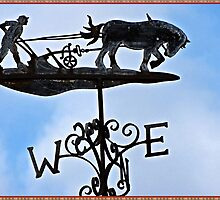 Weathervane Silhouette by Malcolm Chant