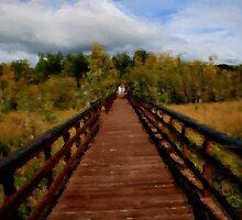 Boardwalk by dmark3