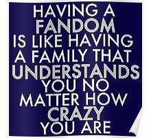 Fandom Understands Crazy (White) Poster