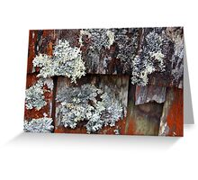 Dove Lake Boatshed - Cradle Mountain National Park, Tasmania Greeting Card
