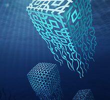 Box Jellyfish by fischer
