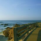 Boardwalk at Pebble Beach by Marjorie Wallace