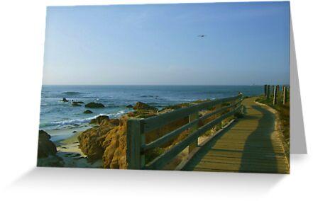 Boardwalk at Pebble Beach by Marjorie Wallace