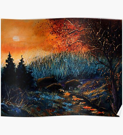 Wild boars at sunset Poster