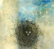 Bird's Nest  by Elena Ray