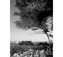 Views From The Beach ~ Part Two Photographic Print