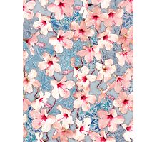 Shabby Chic Hibiscus Patchwork Pattern in Pink & Blue Photographic Print