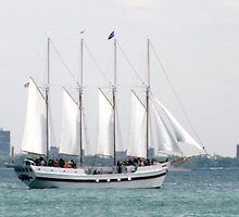 sailing by Kittin