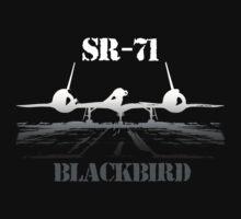 SR 71 Blackbird by hottehue
