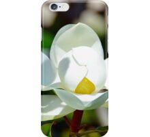 Magnolia Grandiflora iPhone Case/Skin