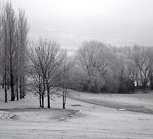Frosty golf course by Victoria Kidgell