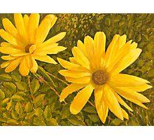Marigolds. Photographic Print