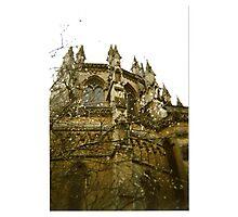 Gothic Blossom Photographic Print