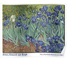Irises by Vincent Vincent van Gogh Poster