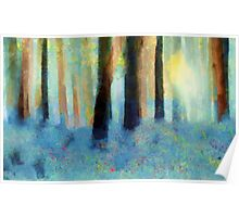 Bluebell Wood'... Poster