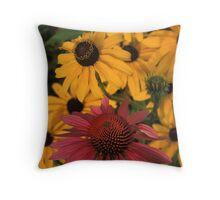 Echinacea & Black-Eyed Susan Throw Pillow