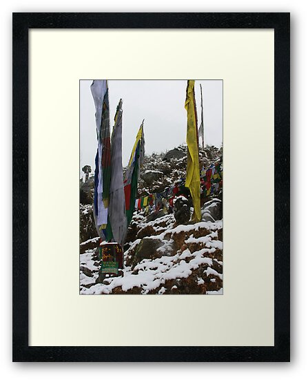 winter. indian himalaya by tim buckley | bodhiimages