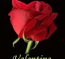 Be My Valentine by SharonD
