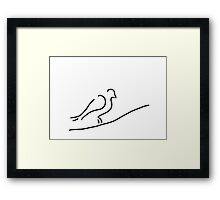 pigeon dove in town city Framed Print
