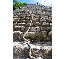 steps of the maya Photographic Print