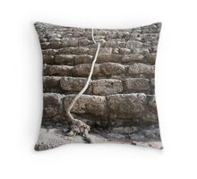 steps of the maya Throw Pillow
