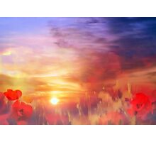 Landscape of dreaming Poppies'... Photographic Print