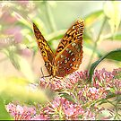 Fritillary Butterfly by Mary Ann Reilly