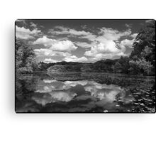 Pond, Late Spring Canvas Print