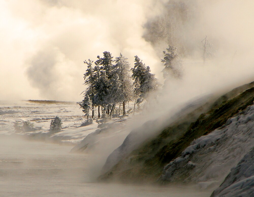 Midway Basin, Yellowstone NP by Virginia Maguire